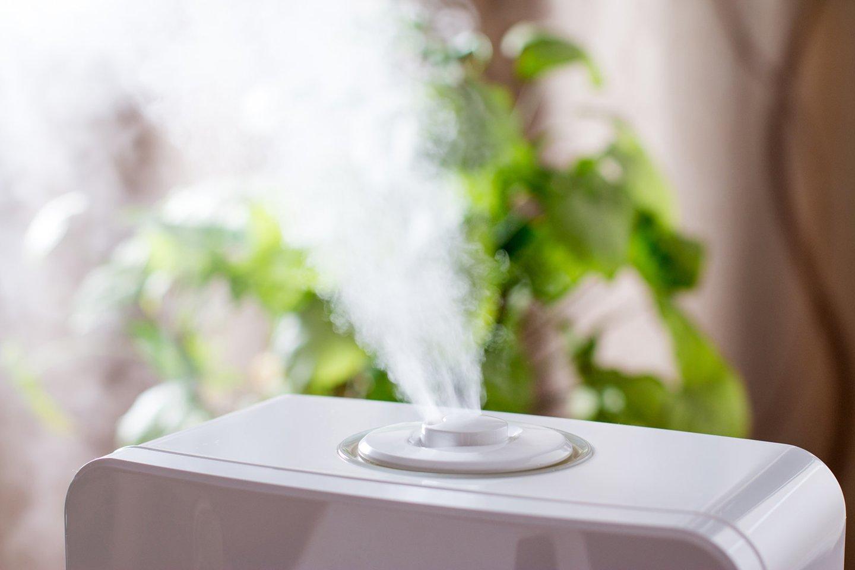 Geriausias ir efektyviausias būdas norint tinkamai išvalyti ir sudrėkinti patalpų orą – oro drėkintuvai ir valytuvai.<br>Autorių nuotr.