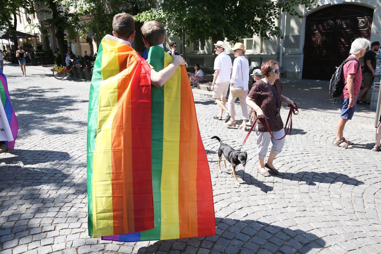 EŽTT skelbs sprendimą, ar Lietuvos teisėsauga nediskriminavo Lietuvos gėjų poros, atsisakydama pradėti tyrimą dėl neapykantos kurstymo prieš juos socialiniuose tinkluose.<br>R.Danisevičiaus asociatyvi nuotr.