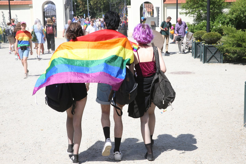 EŽTT skelbs sprendimą, ar Lietuvos teisėsauga nediskriminavo Lietuvos gėjų poros, atsisakydama pradėti tyrimą dėl neapykantos kurstymo prieš juos socialiniuose tinkluose.<br>R.Danisevičiaus nuotr.