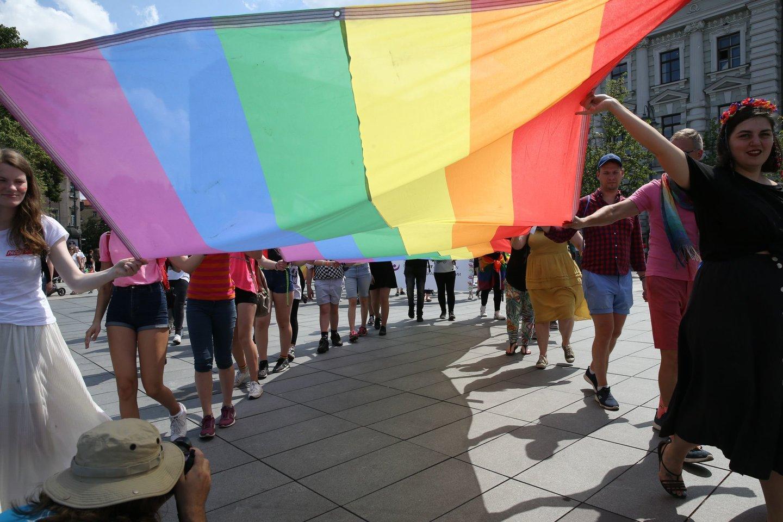 Europos Žmogaus Teisių Teismas konstatavo, kad vaikinai turėjo būti apsaugoti taikant baudžiamosios teisės normas, o jų prašymai buvo atmesti dėl pareigūnų neigiamo nusistatymo jų seksualinės orientacijos atžvilgiu.<br>R.Danisevičiaus nuotr.