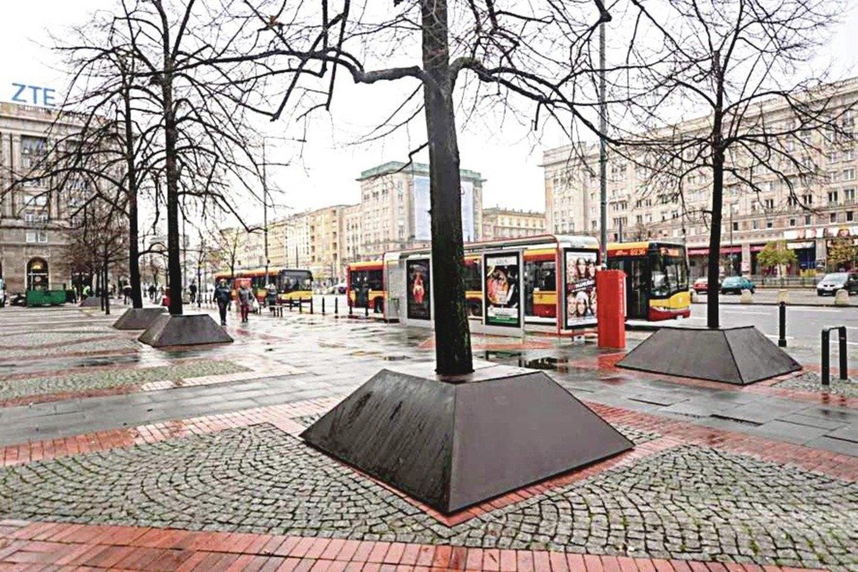 Lenkijos sostinėje medžių aptvarų išvaizda tikrai geresnė negu Vilniuje.