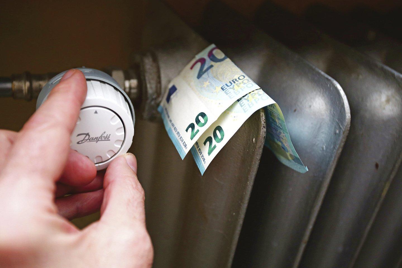 Asociacija vertino Vilniaus, Kauno ir Klaipėdos centralizuotos šilumos vartotojų sutaupymus, kadangi šiuose miestuose konkuruoja daugiausiai skirtingų šilumos gamintojų, naudojančių biokurą.<br>M.Patašiaus nuotr.