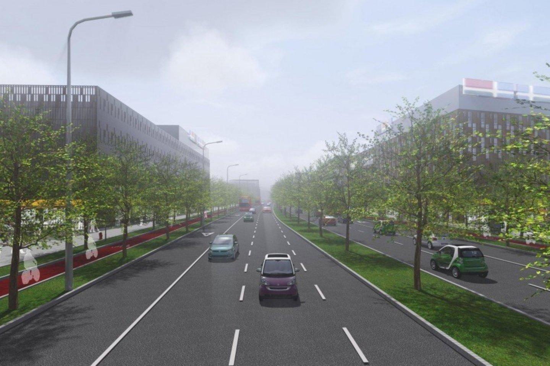 Šiaurinė gatvė, iš pradžių sujungsianti Vakarinį aplinkkelį su Ukmergės gatve, o vėliau – su Žirmūnais, galėtų duoti naują impulsą aplinkui jau veikiančiam verslui.<br>Vilniaus miesto savivaldybės nuotr.