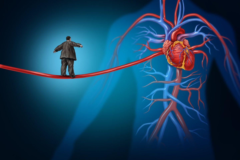 Mėlynės iš pradžių buvo tiriamos dėl jų galimos naudos gydant pažintinės funkcijos sutrikimus, tačiau neseniai buvo įrodyta, kad jos pagerina širdies ir kraujagyslių veiklą.<br>123rf nuotr.