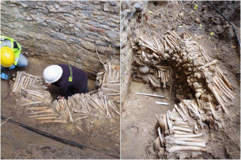 Aplink Šv, Bavo katedrą Belgijoje archeologai kasinėjo 11 mėnesių, kol galiausiai atrado kai ką šiurpaus – devynias sienas, pastatytas ne iš ko kito, bet žmonių kaulų.<br>lrytas.lt koliažas.