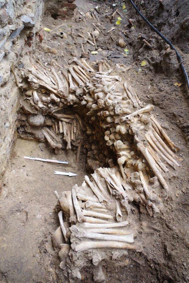 Atlikus datavimą buvo nustatyta, kad didžioji dalis kaulų, iš kurių buvo pastatytos sienos, yra iš XV a. antrosios pusės.<br>Ruben Willaert nuotr.