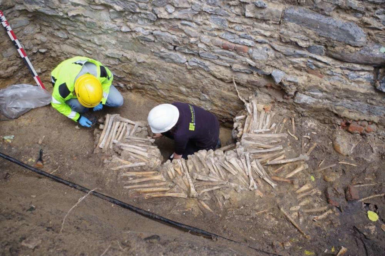 Kiekviena siena buvo statoma daugiausia iš suaugusių žmonių šlaunikaulių ir blauzdikaulių, tačiau tarpuose pasitaikė kaukolių fragmentų.<br>Ruben Willaert nuotr.