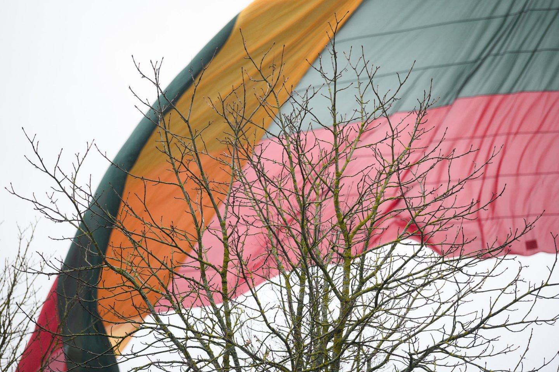 Yra kiemų ir pastatų, ant kurių trispalvės ar Lietuvos istorinės vėliavos su Vyčiu plevėsuoja nuolat.<br>V.Skaraičio nuotr.