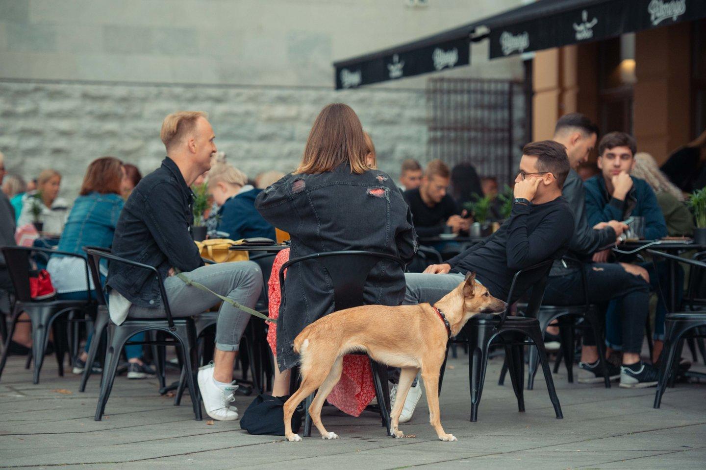 Lauko kavinės.<br>Kauno miesto savivaldybės nuotr.