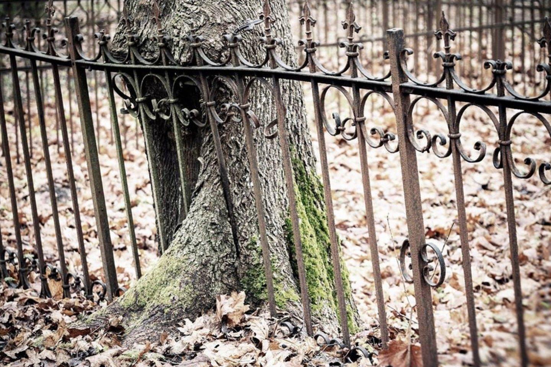 Keletas įvairiose Mažosios Lietuvos kapinėse K.Zdanevičiaus užfiksuotų vaizdų.<br>Asmeninio archyvo nuotr.