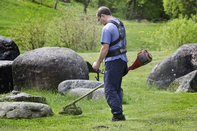 Trimeris, žolė, veja, vejos priežiūra, krūmapjovė, šienavimas, darbuotojas, viešieji darbai<br>V.Balkūno nuotr.