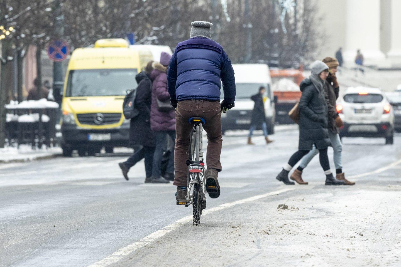 Dviračių sezonui įsibėgėjant, į miestų gatves ir užmiesčio kelius išrieda vis daugiau dviratininkų.<br>V.Ščiavinsko nuotr.