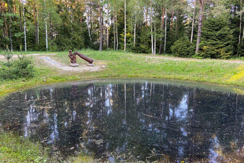 Baltų mitologijos parkas.<br>V.Kesminės nuotr.