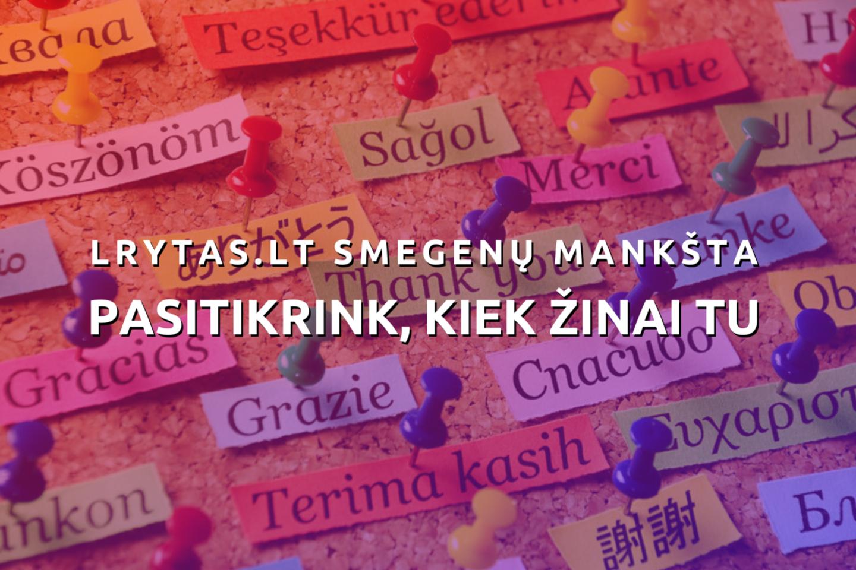 Kiek gerai žinome faktus apie lietuvių kalbą? Apie kaimynų kalbas? Apie viso pasaulio kalbas? Kviečiame pasitikrinti!<br>123rf iliustr.