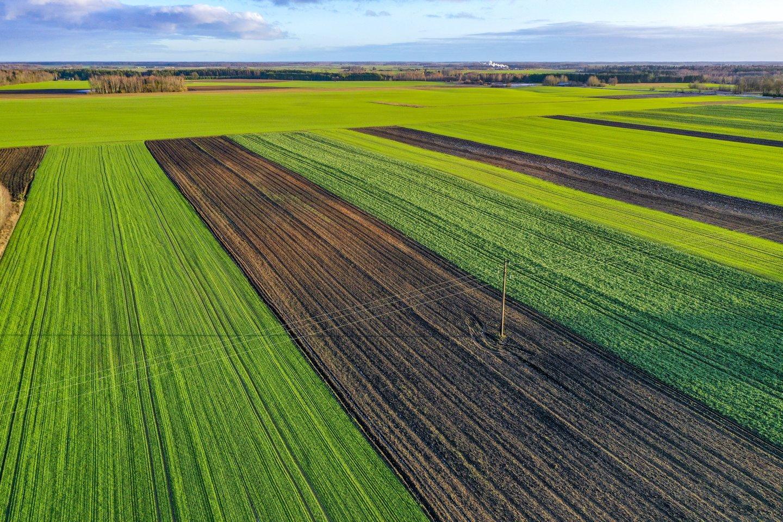 Prezidentas Gitanas Nausėda sako, kad siūlys nustatyti maksimalias tiesioginių išmokų ūkininkams ribas, kad stambieji ūkininkai negautų neproporcingai daug naudos.<br>V.Ščiavinsko nuotr.