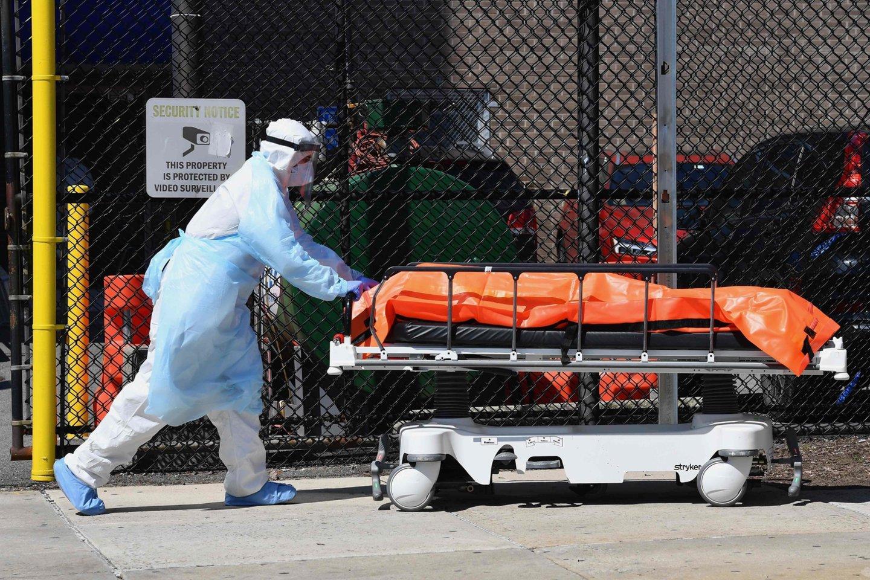 Užmigdytas pirmas šuo, kuriam buvo nustatytas koronavirusas.<br>AFP/Scanpix nuotr.