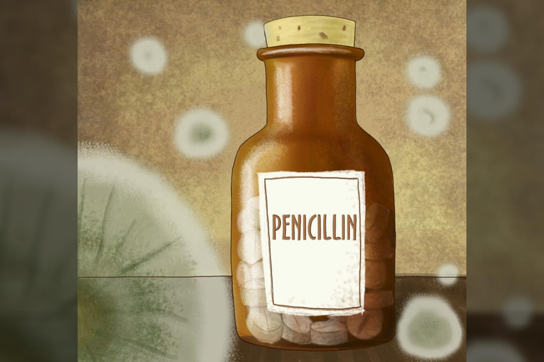 1881 m. gimė škotų biologas ir farmakologas Alexanderis Flemingas. Išgarsėjo 1928 m. išradęs peniciliną, už tai jam 1945 m. buvo paskirta Nobelio premija. Mirė 1955 m.<br>123rf nuotr.