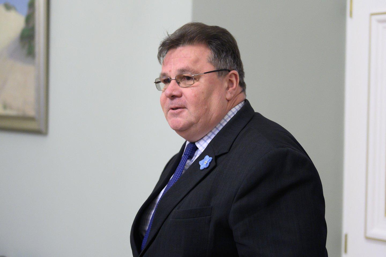 Linas Linkevičius.<br>V.Skaraičio nuotr.