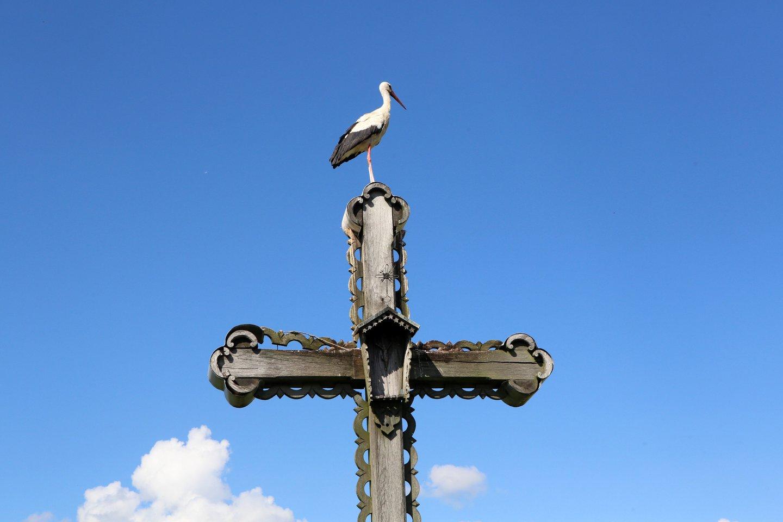 Gandras, kryžius, vasara, orai, tikėjimas, viltis, vaikai<br>M.Patašiaus nuotr.