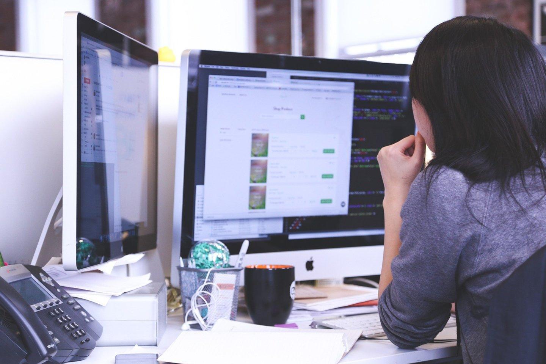 Darbdavio meškos paslauga: nelegali programinė įranga.