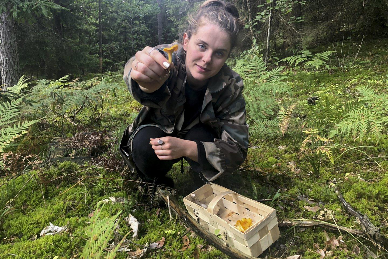 Miško gėrybių supirkėjai džiūgauti nelinkę – verslas galėtų eitis ir geriau.<br>V.Ščiavinsko nuotr.