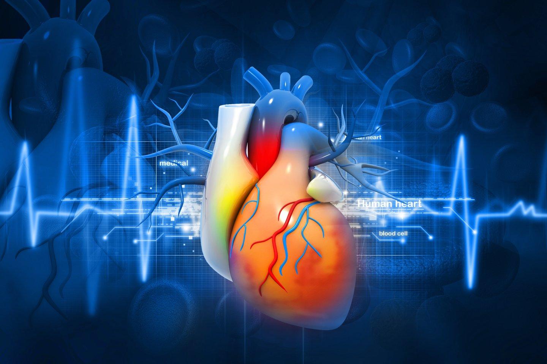 Retos širdies ir kraujagyslių ligos itin grėsmingos gyvybei, progresuojančios ligos.<br>123rf nuotr.