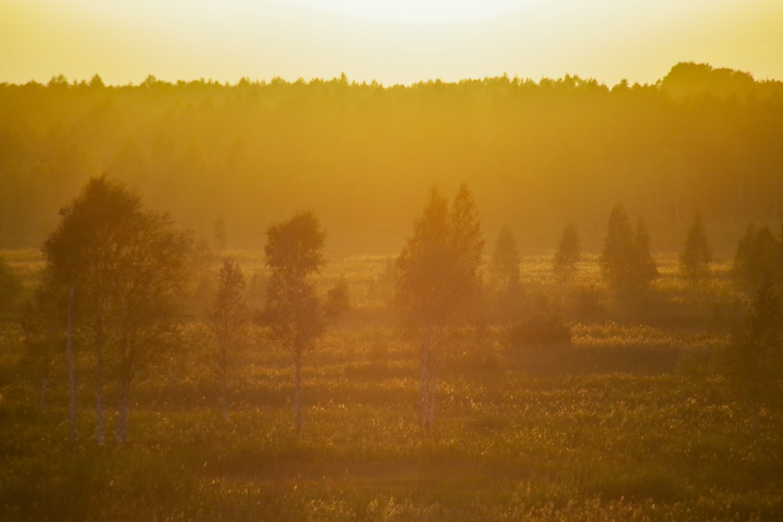 Stebėti gervių vakariniame danguje susirinko ne tik vietiniai, bet ir Kauno, Jurbarko, Šakių gyventojai.<br>V.Ščiavinsko nuotr.