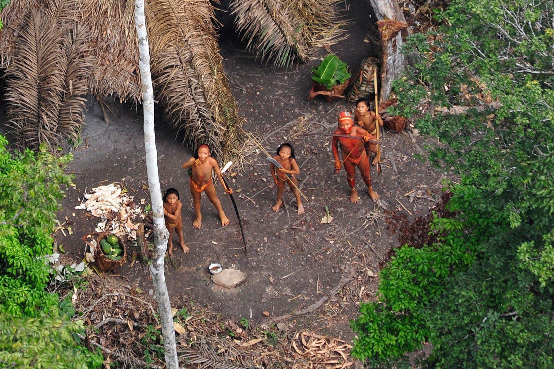 Izoliuotos gentys kartais pradeda smurtauti tada, kai į jų žemes įsiveržianelegalūs kalnakasiai ar brakonieriai (asociatybinė nuotr.).<br>AFP / Scanpix nuotr.
