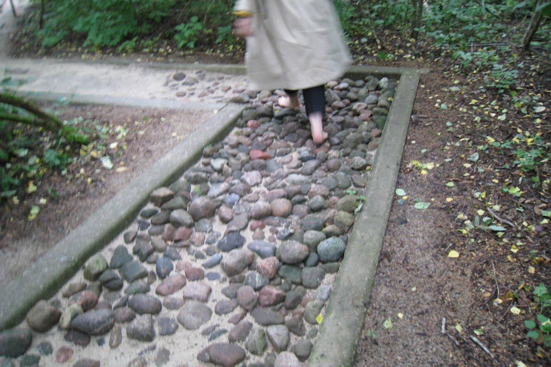 """""""Eko basų kojų parke"""" lankytojų laukia įvairūs išbandymai.<br>M.Augulytės nuotr."""