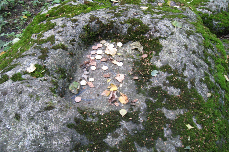 Zigmantiškių akmuo tarsi sudėtas iš atskirų dalių, giliai įsmigęs į žemę.<br>M.Augulytės nuotr.