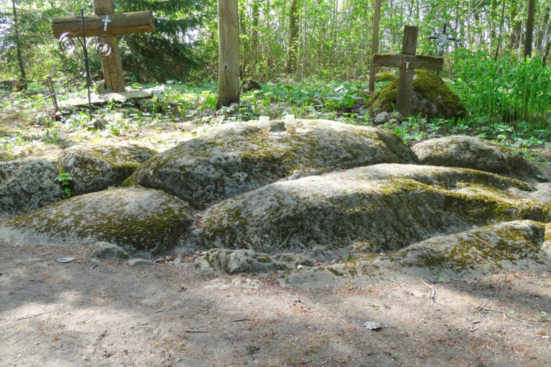 Zigmantiškių akmuo tarsi sudėtas iš atskirų dalių, giliai įsmigęs į žemę.