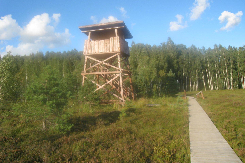 Mūšos tyrelio pažintinis takas – ilgiausias Lietuvoje lentų takas per pelkę.<br>M.Augulytės nuotr.