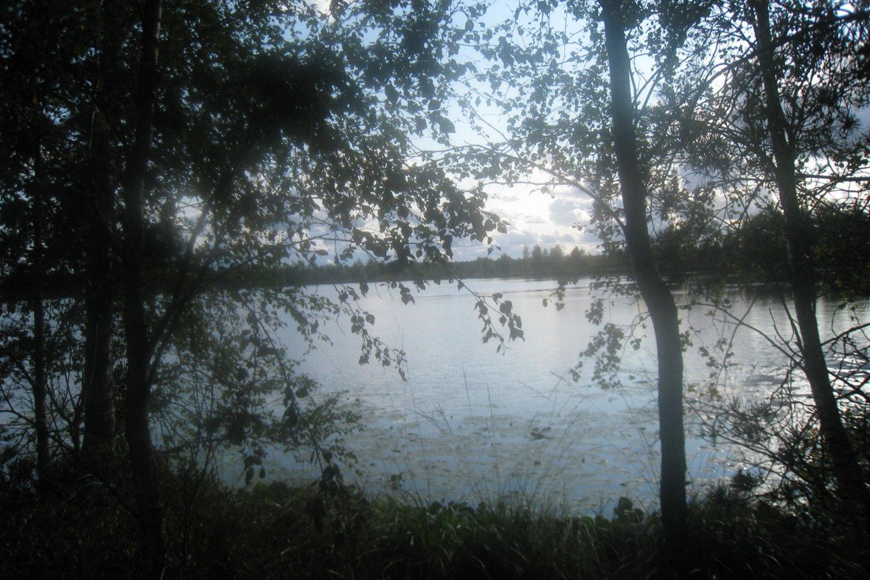 Miknaičių ežere gyvena galingas valdovas.<br>M.Augulytės nuotr.