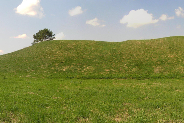 Raginėnų piliakalnis iš rytų pusės.