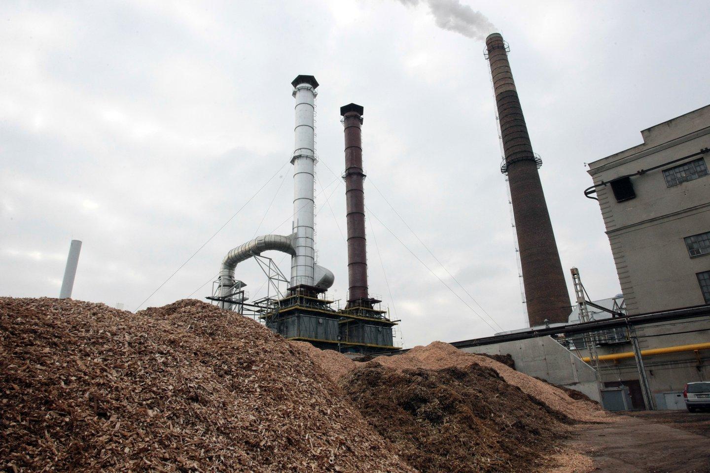 Prieš penkerius metus kilo skandalų dėl radionuklidų biokuro siuntose, tačiau nuo to laiko daug kas pasikeitė.<br>P.Mantauto nuotr.