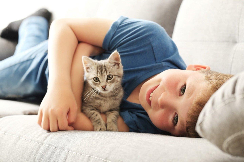 Ką reikėtų atsiminti, parsinešus namo mažą kačiuką?<br>Pranešimo spaudai nuotr.