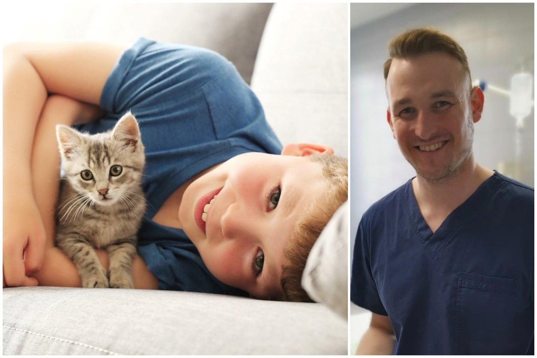Ką reikėtų atsiminti, parsinešus namo mažą kačiuką?<br>Lrytas.lt koliažas