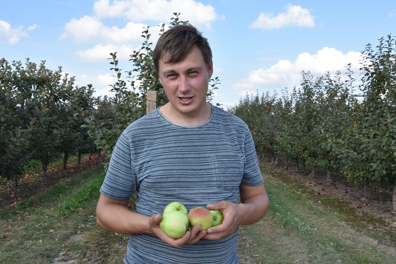 Urbonavičių sodininkystės ūkio pamatas – kiaurus metus dirbantys žmonės.<br>A.Srėbalienės nuotr.