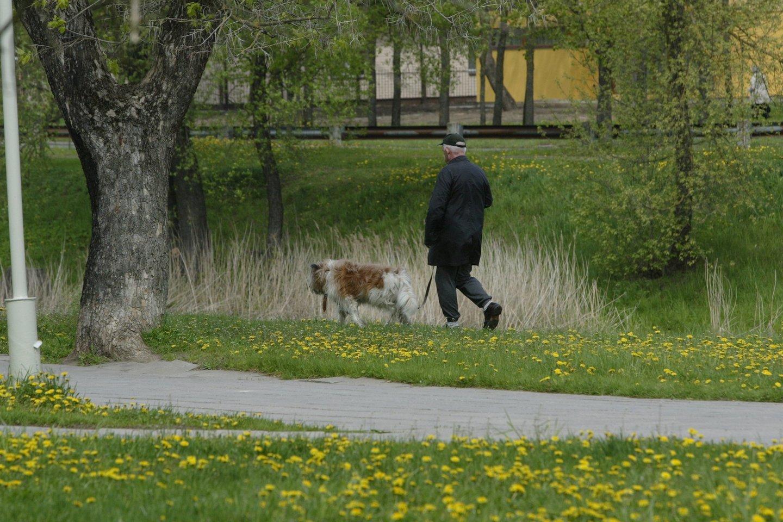 Siūlo norintiems įsigyti augintinių baigti specialius gyvūnų priežiūros kursus.<br>T.Stasevičiaus nuotr.