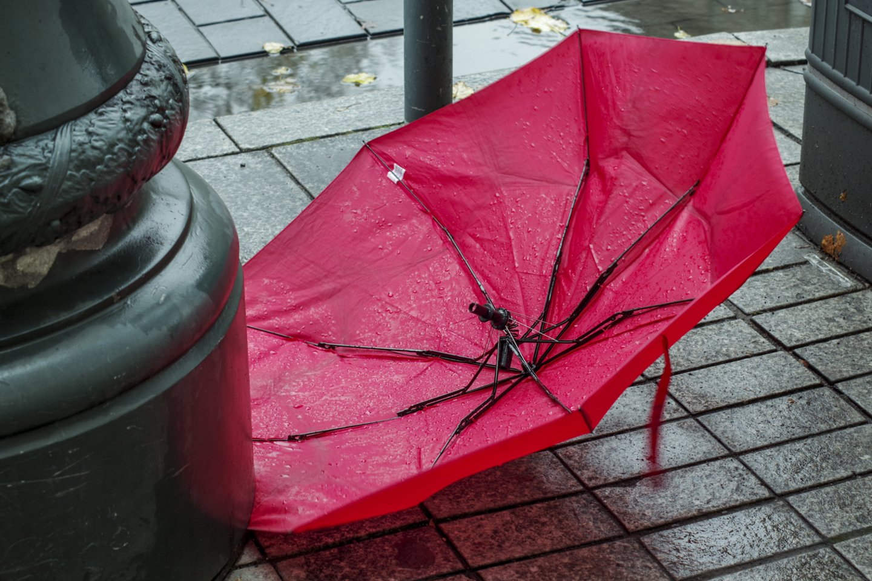 Ruduo,lietus,orai<br>V.Ščiavinsko nuotr.