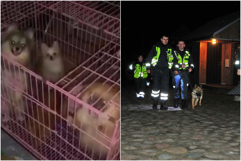 Šunys buvo laikomi baisiomis sąlygomis, bet veisyklos savininkė baudžiamosios atsakomybės išvengė.<br>Lrytas.lt koliažas