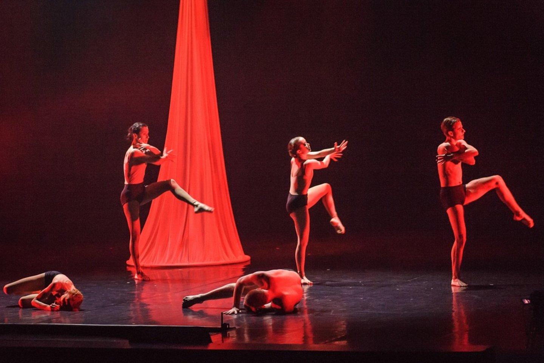 """""""Dėmesio! Baletas"""".<br>O.Kasabovos nuotr."""