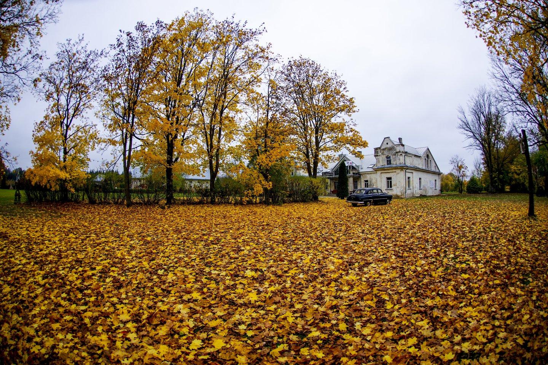 Babtyno dvaras,Mindaugas Šventoraitis,ruduo,orai<br>V.Ščiavinsko nuotr.