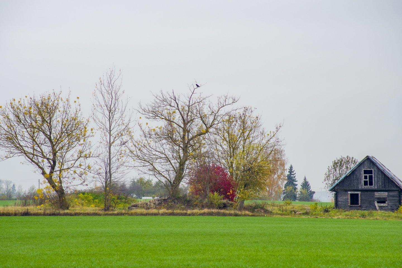 Gamta,ruduo,saulėgražos,orai<br>V.Ščiavinsko nuotr.