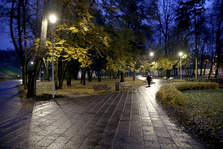 """Savivaldybės valdoma įmonė """"Vilniaus apšvietimas"""" nori nuraminti visus gyventojus.<br>R.Danisevičiaus nuotr."""
