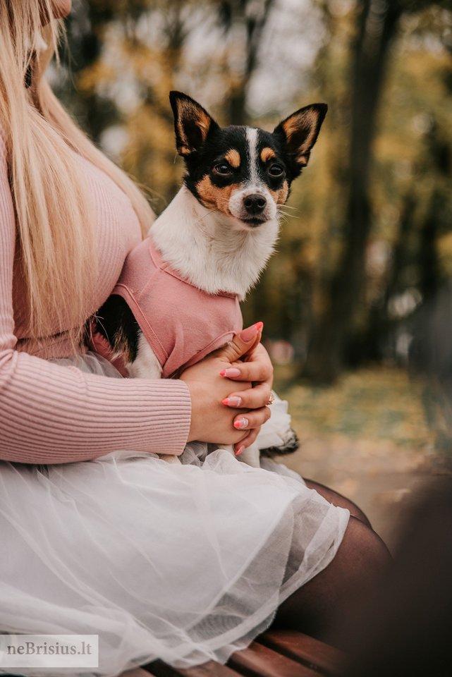 """""""Luna tapo mūsų kompanione, dabar ji su mumis visur važiuoja, kartu keliauja bei lankosi paplūdimiuose"""", – apie priglaustą šunytę sakė Viktorija.<br>G.Kniežaitės Novikovienės nuotr."""