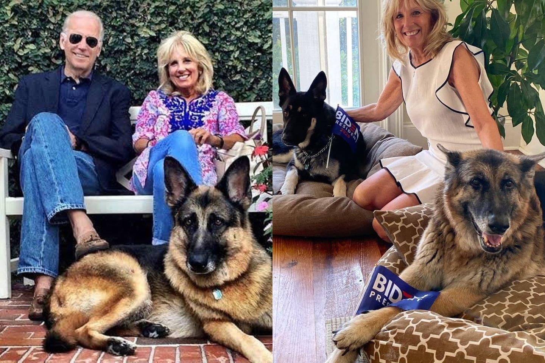 Joe ir Jill Bidenai augina du vokiečių aviganius.<br>lrytas.lt montažas.