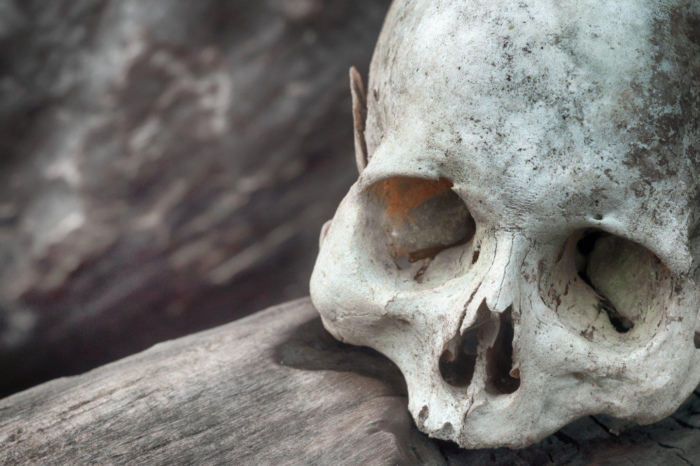 Pateikiame 10 tikrų kanibalizmo pavyzdžių, kurie skirtingai nei zombiai, yra realūs.<br>123rf nuotr.