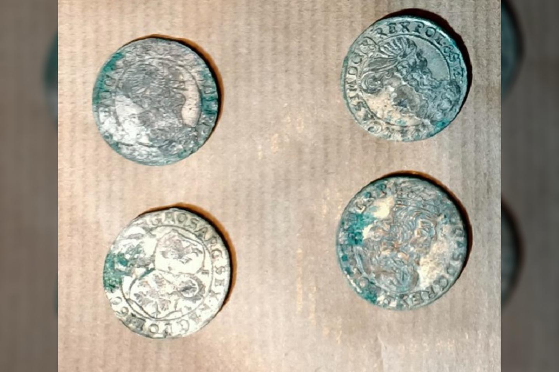 Iš viso buvo rastos 86 XVI a. monetos.<br>Szoik Rojewo nuotr.