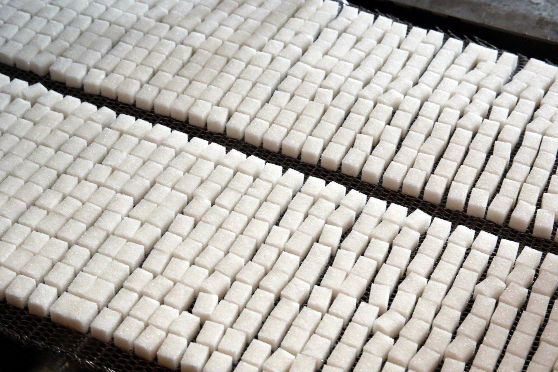 N.Mačiulis pirmadienį sakė, kad cukraus mokestis didelės naštos gyventojams nesudarytų.<br>R.Danisevičiaus nuotr.